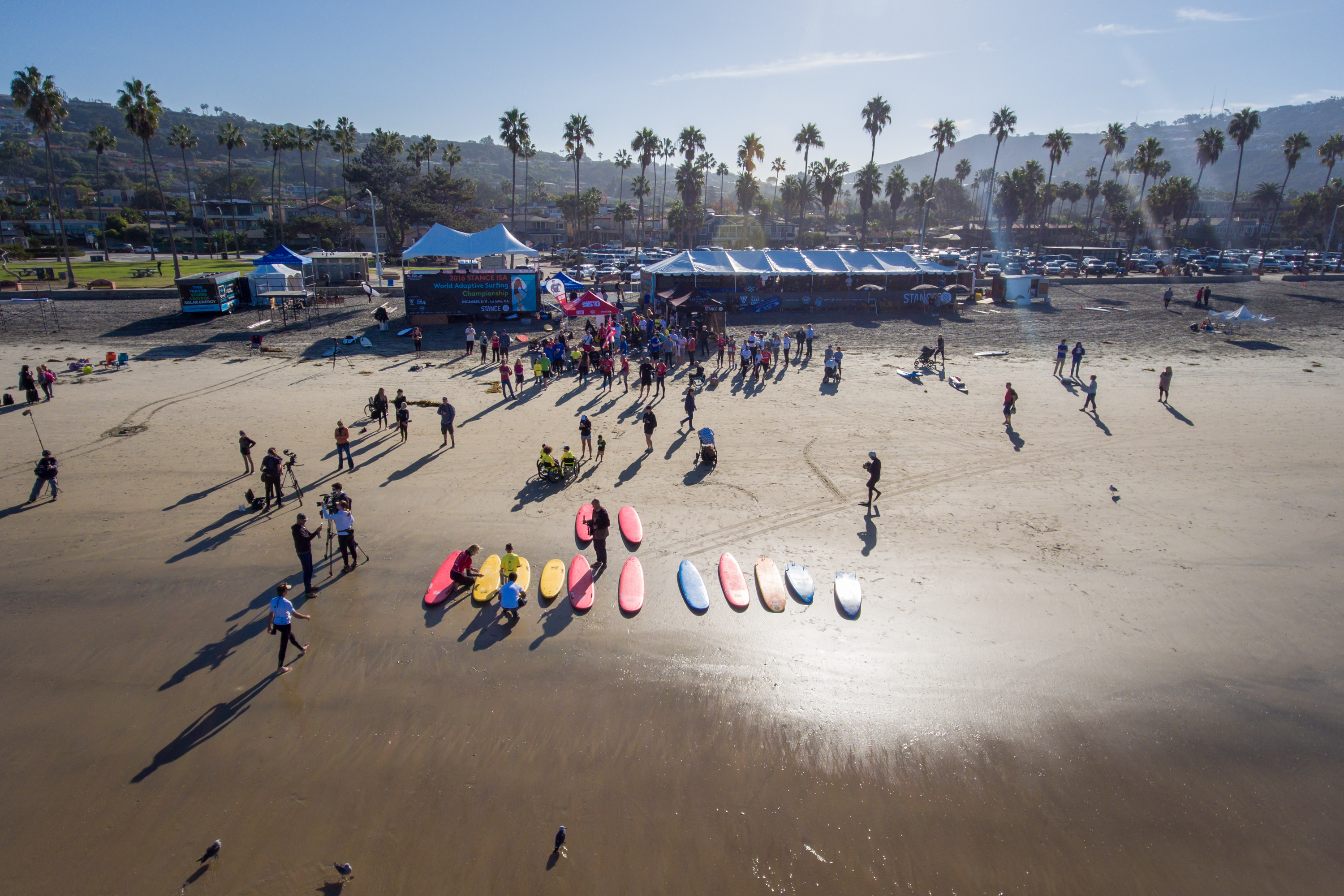 Surfboards and surfers